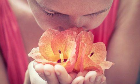 Olfatoterapia: los Aceites Esenciales para Cuidar el Cuerpo y Acompañar las Emociones