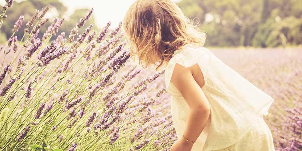 AromasQueCuran – Aromaterapia Aplicada a Bebés y Niños