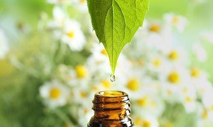 AromasQueCuran Premium - Aceites Esenciales y Esencias