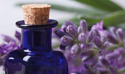 AromasQueCuran Premium - Hidrolatos o Aguas Florales