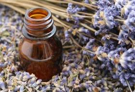 La Aromaterapia… una Experiencia Olfativa: Apoyo Terapéutico