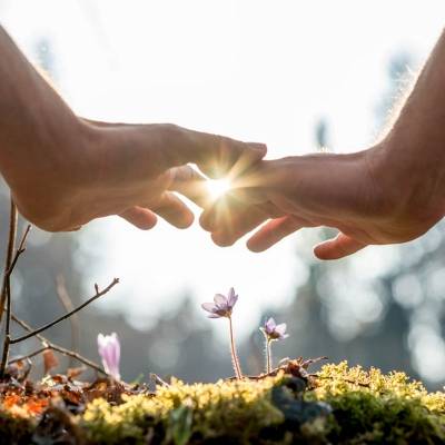 aromaterapia-energetica-y-equilibrio-psicoemocional